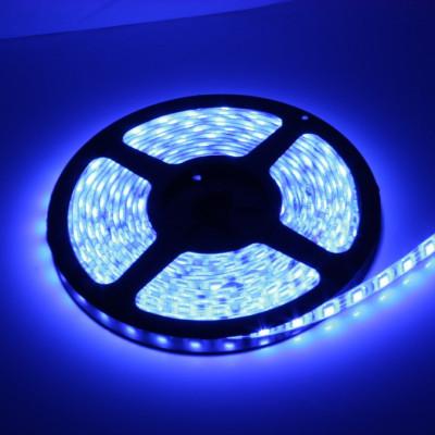 ruban-strip-48w-led-bleu-12v-dc-5m-dimmable